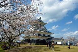 spring_sakura2