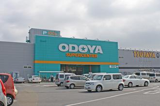 odoya-1
