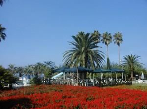 flowerpark-2
