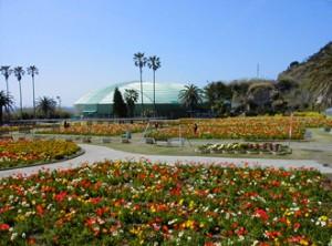 flowerpark-3
