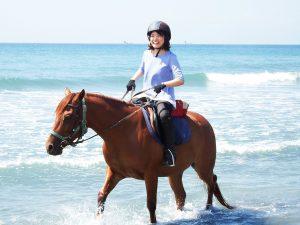 海岸乗馬体験コース