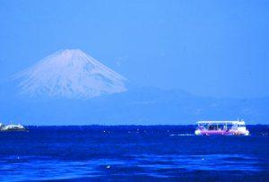 海中観光船「たてやま号」