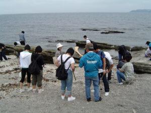 海辺の自然観察&ビーチコーミング