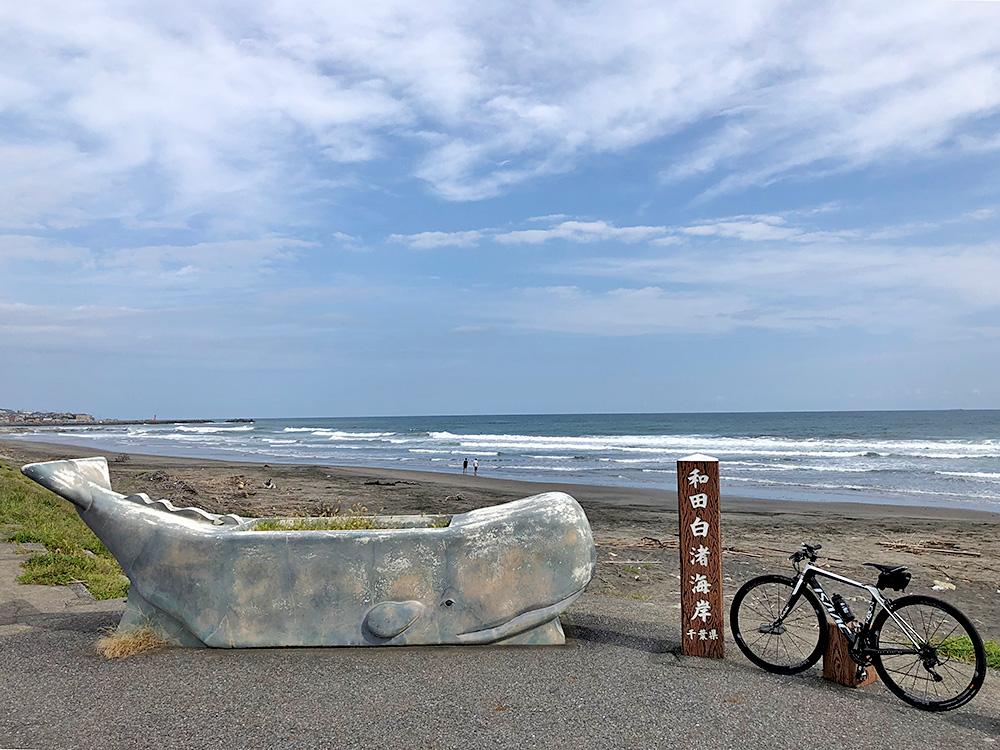 白渚(しらすか)海岸