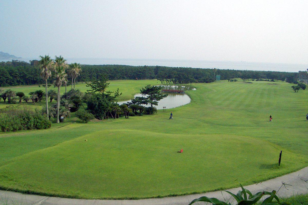 高爾夫球(ゴルフ)