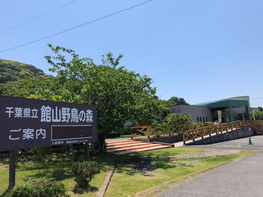 館山野鳥森林